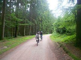 Fahrradtour_2.jpg